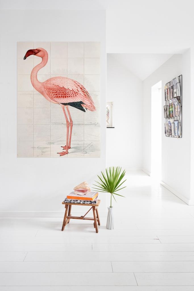IXXI NHM Flamingo Davies